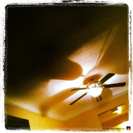 Our ceiling fan, trying to be artsy