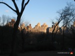 04-new-york-horizon-central-park-skyline-trees