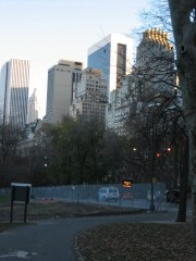 Central Park in winter, 2010