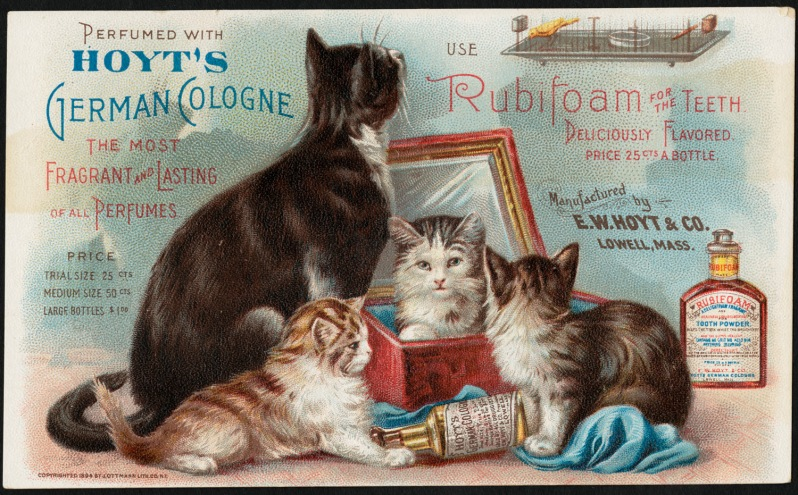 german-advertising-retro-old-timey-cologne-cats