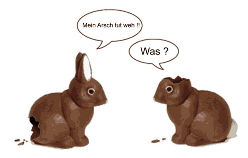 funny chocolate easter bunny German