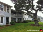 24-sea-breeze-court-front-yard-cannon-beach-oregon