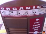 23-organic-recycling-mull-rubbish-basara-fems-container-mallorca