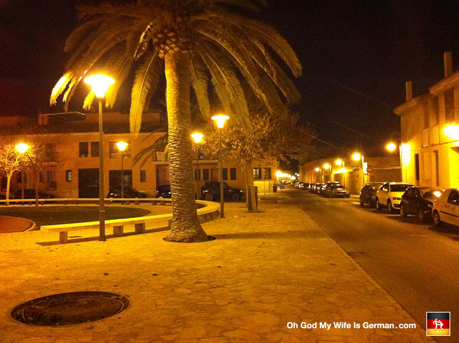 34-palma-mallorca-park-palm-tree-night