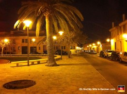 34-palma-mallorca-park-palm-tree-night