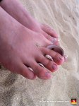 66-cute-toes-with-shells-on-the-beach-feet