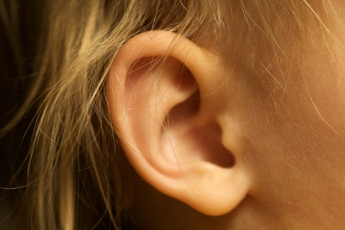 childs-ear-perfect-small-cute