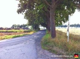 05-Steinhuder-Meer-Bike-Trail-Farmland