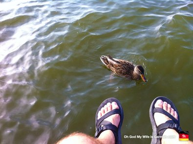 15-Steinhuder-Meer-Duck-Feet-In-Water