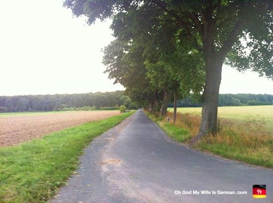 29-Steinhuder-Meer-Bike-Trail-to-Restaurant