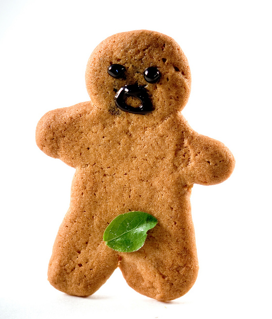 02-gingerbread-man-funnyleaf-over-privates-naked-man
