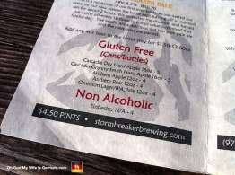 Oh, this just gets better and better! See that non-alcoholic beer on the menu? It's made in Einbeck, which is like an hour away from Hannover. QUIT FOLLOWING US, GERMANY.