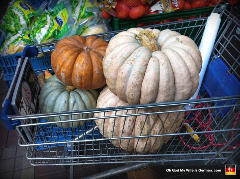 german-pumpkins-kurbis-gardening-harvest