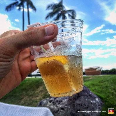 """This was our last full day on the island. I was feeling a might depressed, so I asked the bartender for, """"the strongest Long Island Iced Tea you can possibly make."""" This earned me a snort as the bartender replied, """"A Long Island Iced Tea is ALREADY the strongest drink I can make."""" Well fuck you too, buddy! Oops! I dropped your tip right back into my wallet."""
