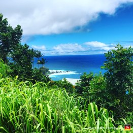"""Here's a view of the ocean from Akaka Falls State Park. (Heh, you said """"Cock."""")"""