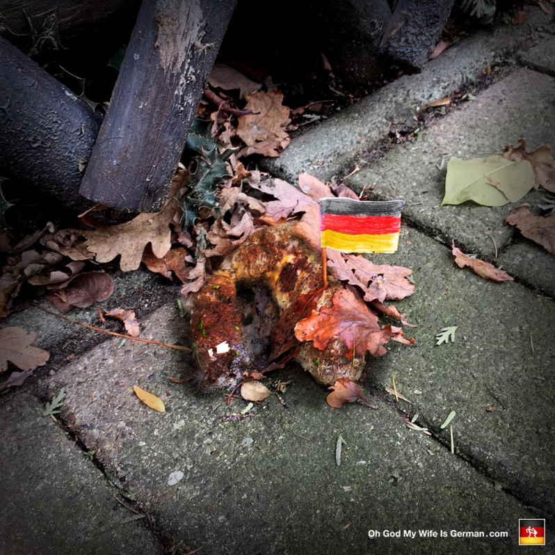 German flag in dog poop