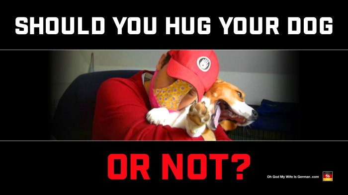Should you hug your dog or not? Is hugging bad for dogs?