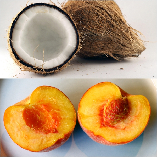 Coconuts-vs-Peaches-Germans-and-Americans Cultural Differences