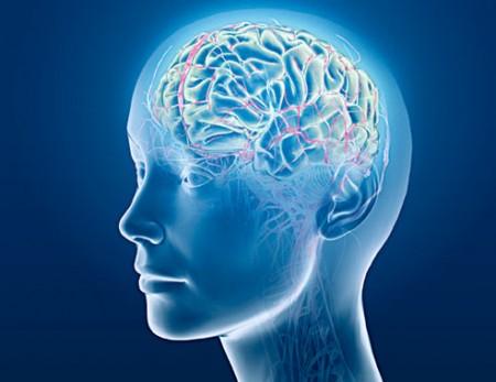 Healthy Brain Scan